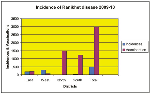 Incidence of ranikhet disease