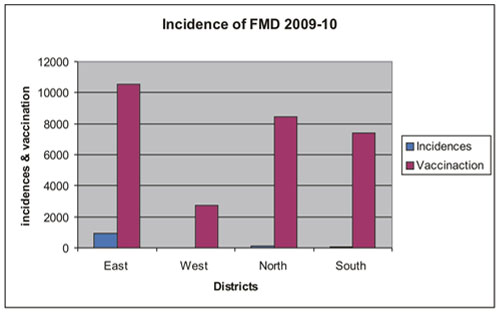 Incidence of FMD