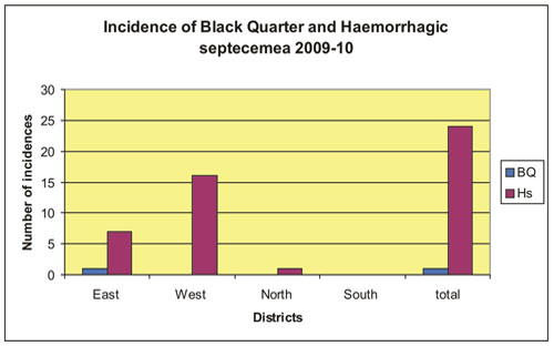 incidence-of-black-quarter-and-haemorrhagic-septecemea